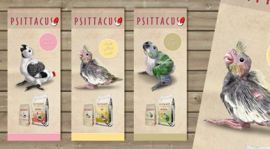 Cartells Psittacus Catalonia